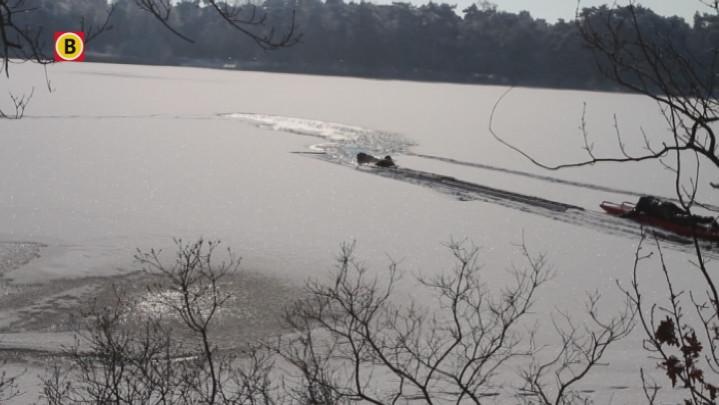 Pret en ellende op koude 4 februari