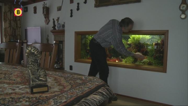 Aquariumhouder uit Nispen Nederlands Kampioen