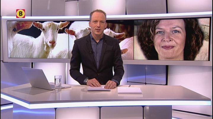 Handreiking minister Schippers naar slachtoffers q-koorts in Herpen