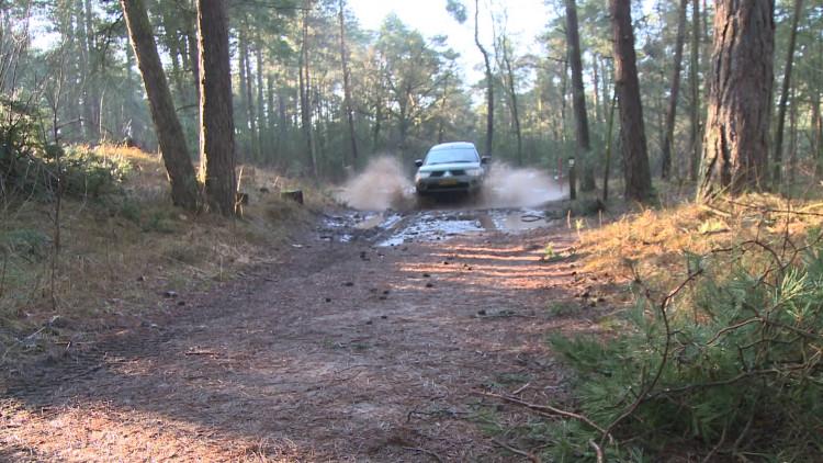 Drukke tijden voor boswachters: Brabantse bossen liggen vol met geknakte bomen en takken