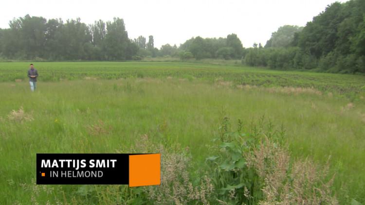 Slimste wijk van Nederland komt in Helmond