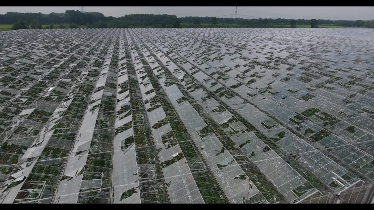 Schade noodweer van bovenaf: kassen aan diggelen door hagel