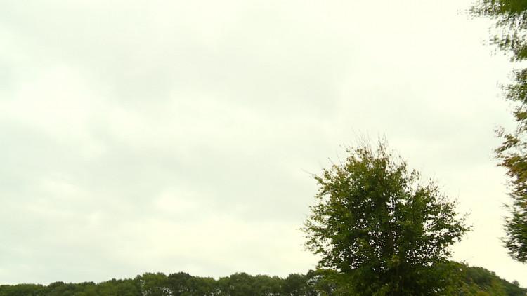 Baas boven baas! Waldo loopt drie afstanden tijdens Marathon Eindhoven