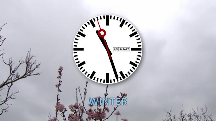 De lente is begonnen! 125 lammetjes geboren in Schijndel
