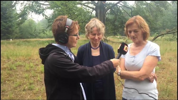 'Bomenfluisteraar' weet wat zieke boom in Mastbos nodig heeft