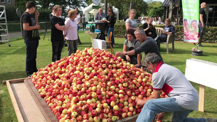 Wereldrecord! Mega-piramide van 7000 appels in Vinkel