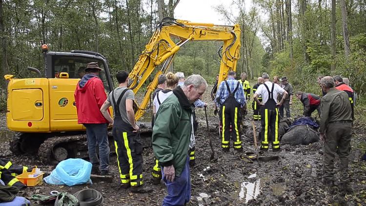 Paarden uit drijfzand gered in bossen Udenhout