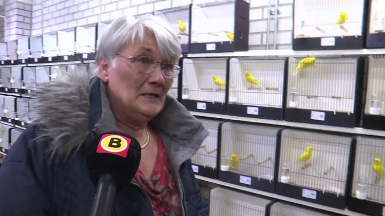 Vogels gestolen bij De Bastaarden in Nuenen