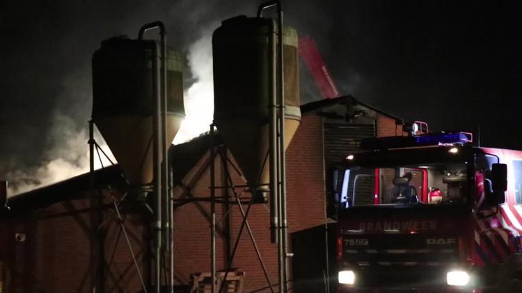 Grote brand in varkensstal in Deurne, meeste dieren overleven het