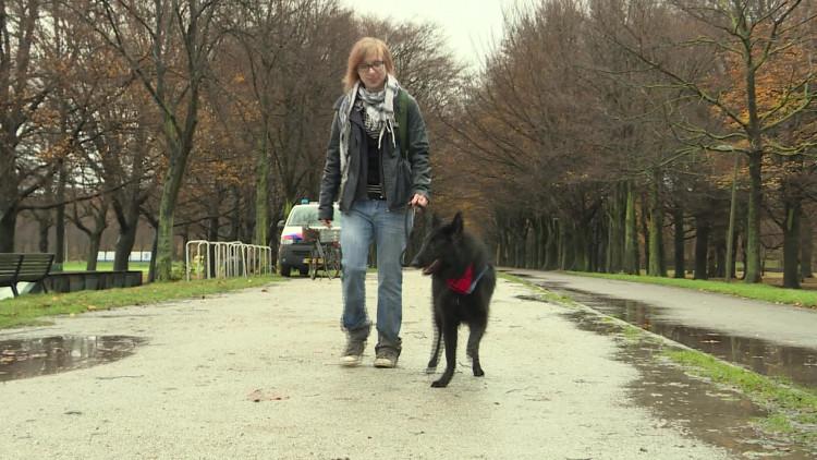 Hondenbezitters demonstreren in Den Haag tegen vlooien- en tekenbestrijdingsmiddel Bravecto van MSD in Boxmeer