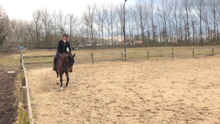 Droom van Donna (12) komt uit: Rijden op Indoor Brabant