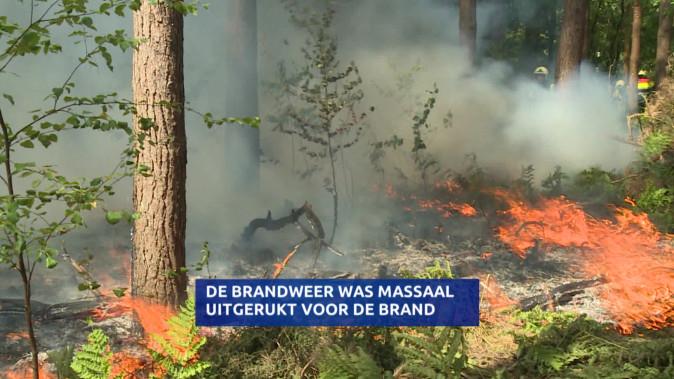 Brand In De Loonse En Drunense Duinen