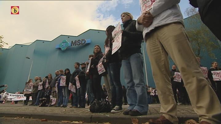 Het protest voor vrijlating apen bij MSD verliep rustig